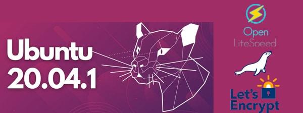 Ubuntu 20.04 com OpenLiteSpeed e MariaDB - HelpSysAdmin